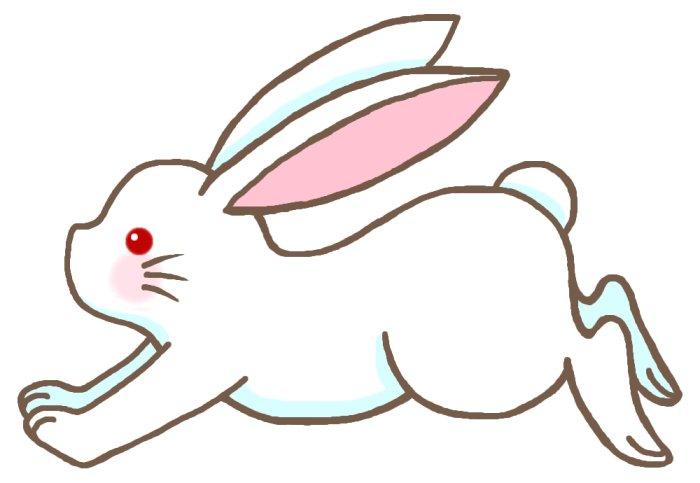 ウサギ(兎)1/かわいい動物のイラスト/うさぎ・兎・ラビット