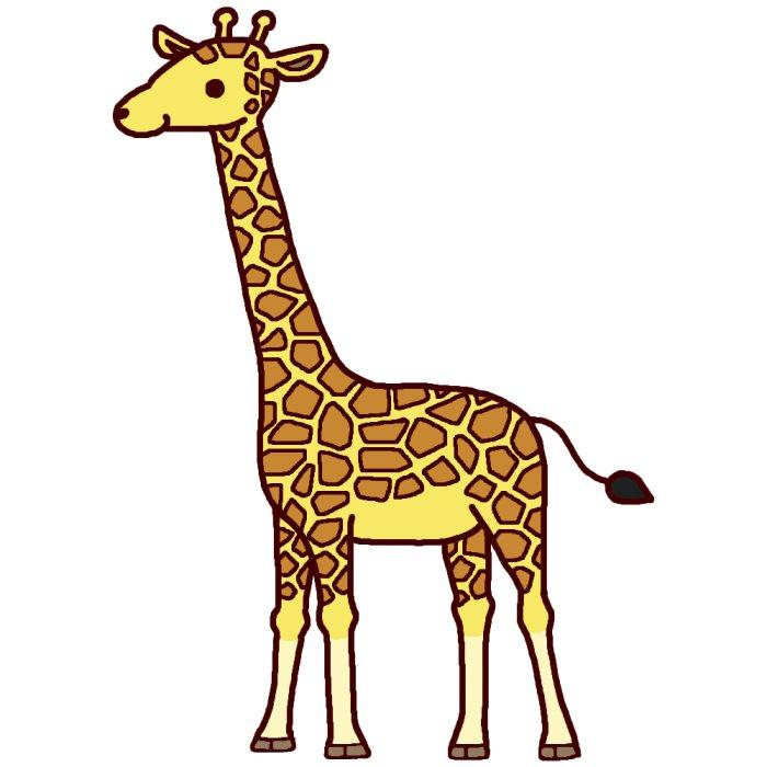 キリン1 カラー 陸の大きな動物 無料イラスト素材