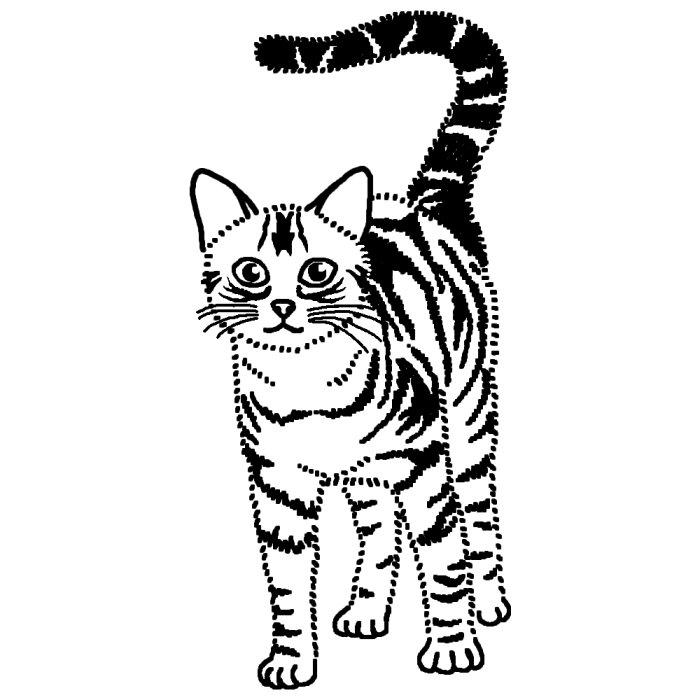 アメリカンショート1 白黒 ネコ 猫 の仲間 動物の無料イラスト素材