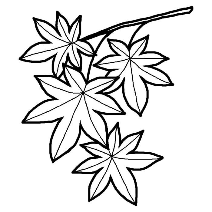 紅葉・もみじ(白黒)/秋の無料イラスト/季節素材